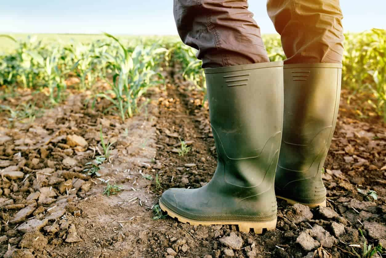 5-Best-Wellies-For-Farmers-Review-Guide