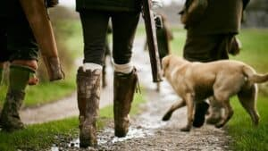 Best-Boots-For-Dog-Walking-UK-Review